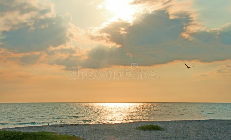 Behind the Clouds. A peaceful photograph of the afternoon sun shining brightly from behind the clouds on the beach in southwest Florida as a pelican floats by royalty free stock image