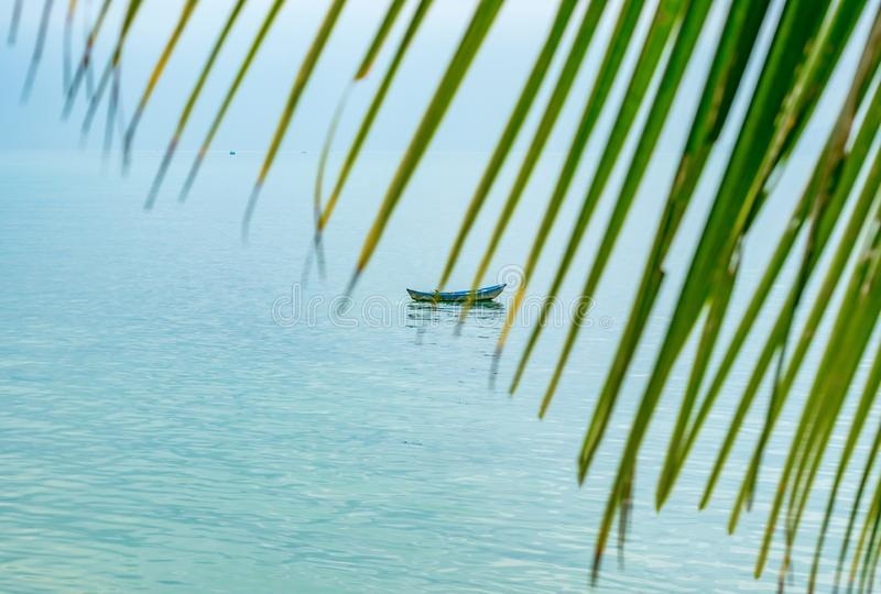 Behind palm leaves boat in the sea stock photo