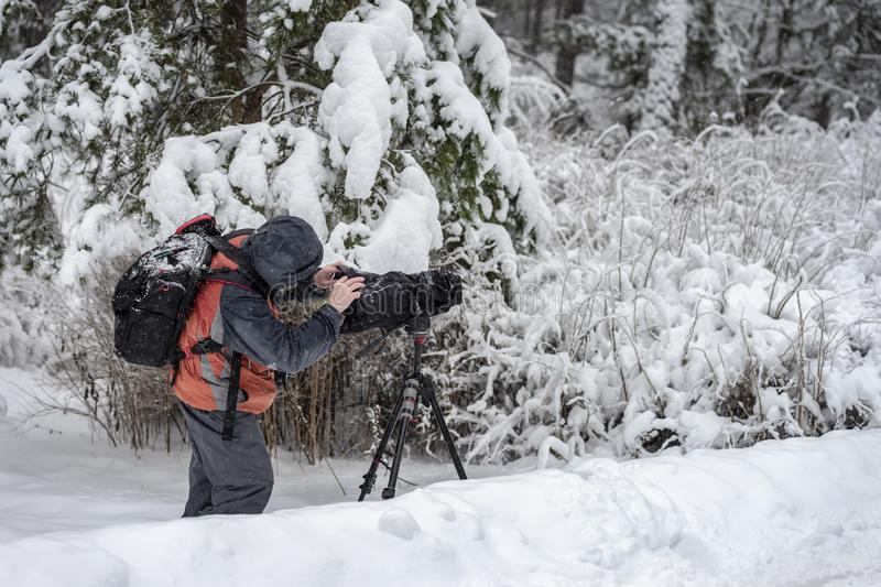 Behind the scene. Cameraman with video camera on tripod, shooting the film scene at outdoor location, on nature, forest royalty free stock photos