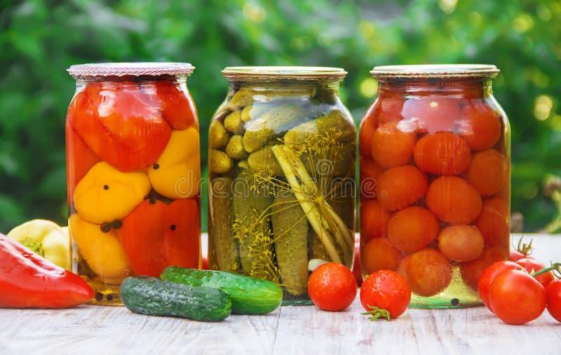 Behoud van groenten spaties Selectieve nadruk Voedsel royalty-vrije stock fotografie