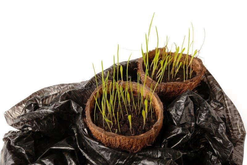 Behoud van het groene ecosysteem van de planeet, gevaar van milieuverontreiniging, recycling van afval stock afbeelding