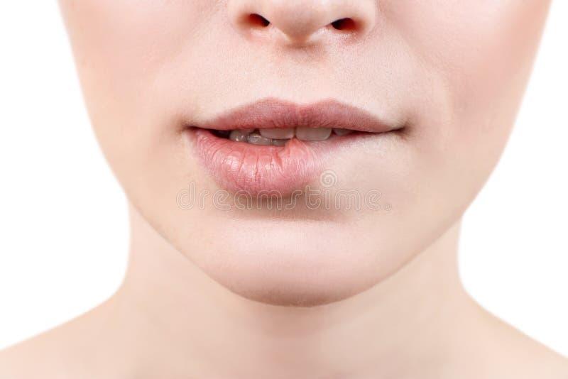 Beißende Lippe der jungen sexy Frau Nahaufnahme stockfotografie