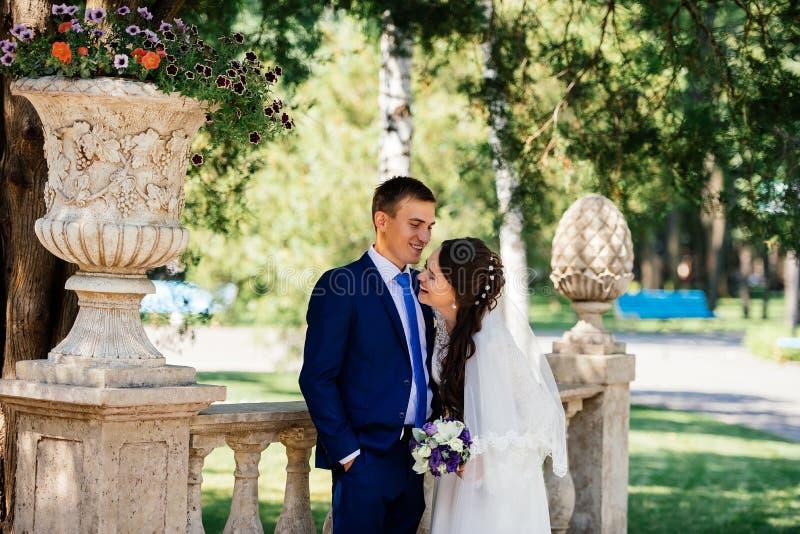 Bei abbracci sorridenti della sposa e dello sposo di Yong nel parco la sposa abbraccia lo sposo Coppie nell'amore al giorno delle fotografia stock