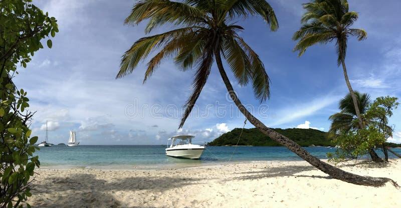 Bei alberi bianchi tropicali del cocco e della spiaggia fotografia stock