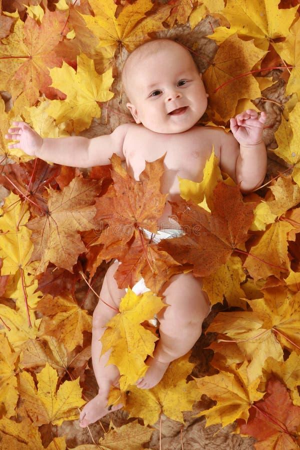Bei bambini in fogli di autunno immagine stock libera da diritti