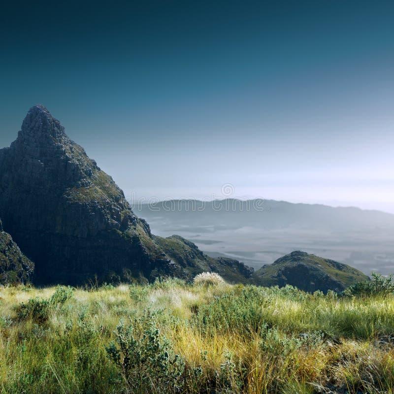 Bei campo e montagne di alta risoluzione di verde di estate fotografia stock libera da diritti