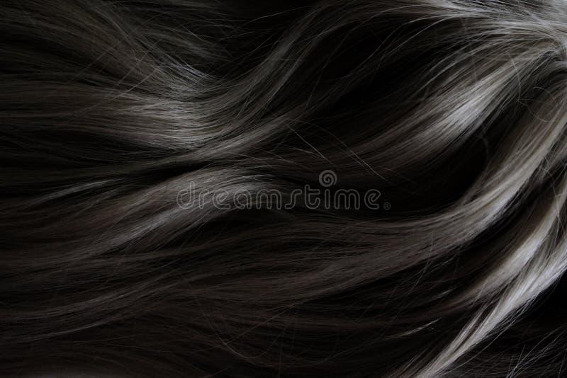 Bei capelli Capelli scuri ricci lunghi Macchiando nel colore scuro immagini stock libere da diritti
