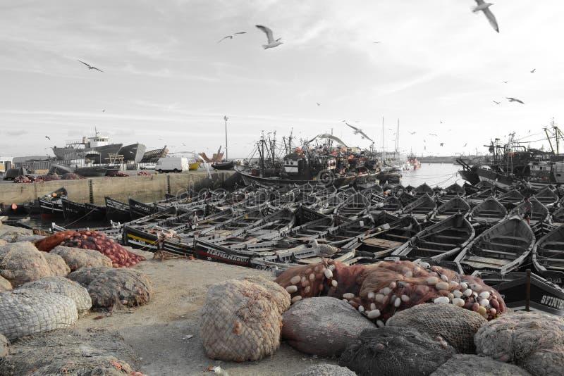 Bei colori, porto marittimo di Essaouira Marocco fotografie stock libere da diritti