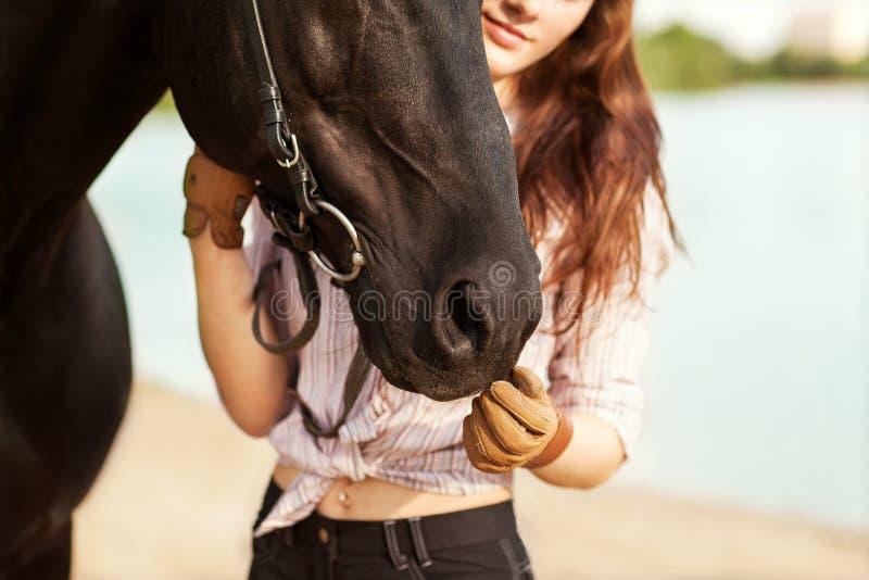 Bei donna e cavallo fotografie stock