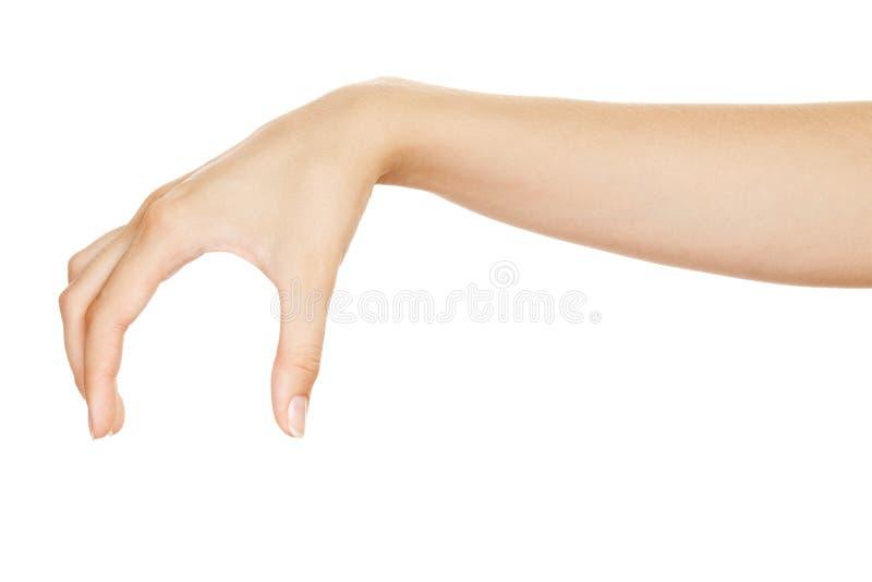 Bei elementi della holding della mano della donna fotografie stock libere da diritti
