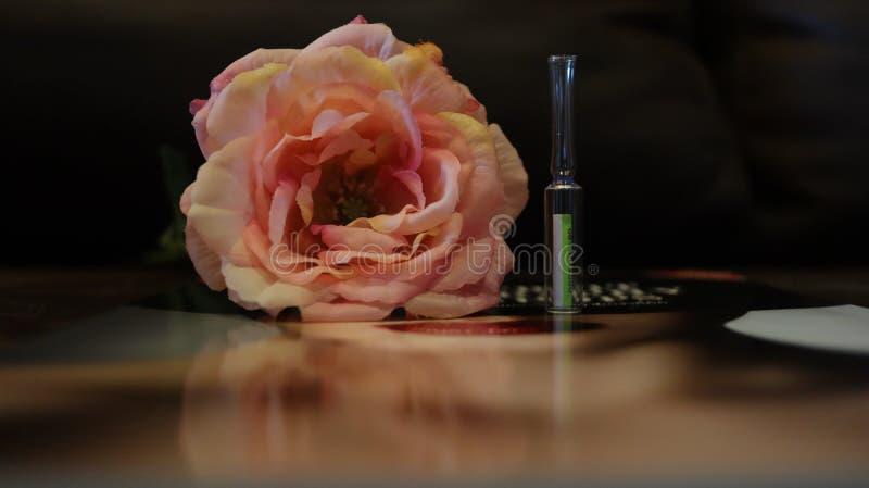 Bei fiore e natura fotografie stock libere da diritti