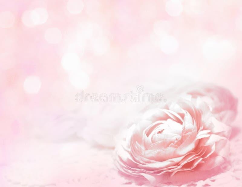 Bei fiori fatti con i filtri colorati - fondo di Abstrack fotografie stock