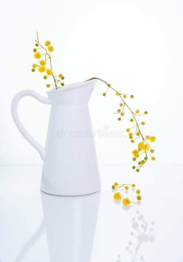 Bei fiori gialli su un vaso bianco Alta fotografia chiave di natura morta fotografie stock libere da diritti