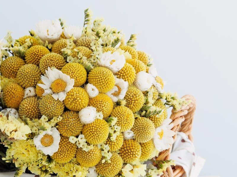 Bei fiori secchi immagine stock