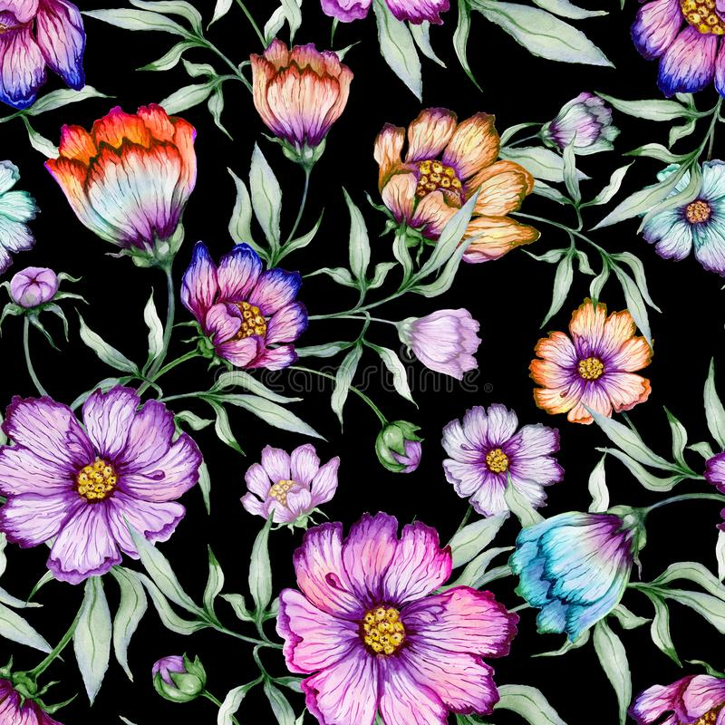 Bei fiori variopinti dell'universo con le foglie su fondo nero Reticolo floreale senza giunte Pittura dell'acquerello royalty illustrazione gratis