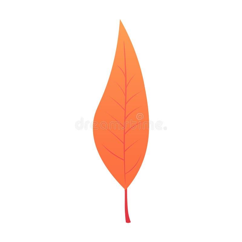 Bei fogli di autunno colourful dell'accumulazione isolati su priorità bassa bianca Illustrazione royalty illustrazione gratis