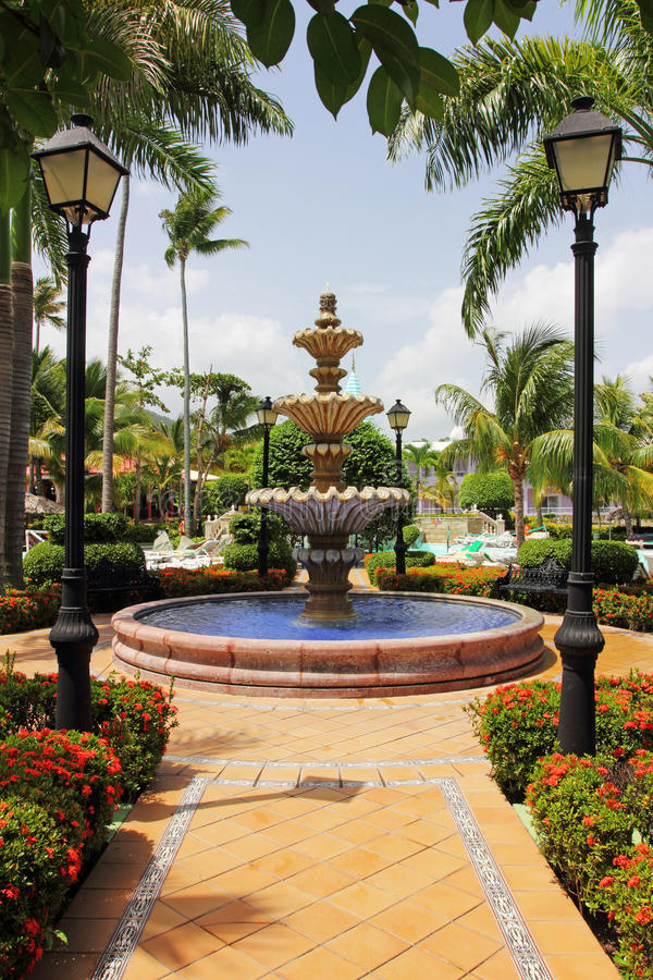 Bei giardini tropicali ornamentali immagine stock for Giardini ornamentali