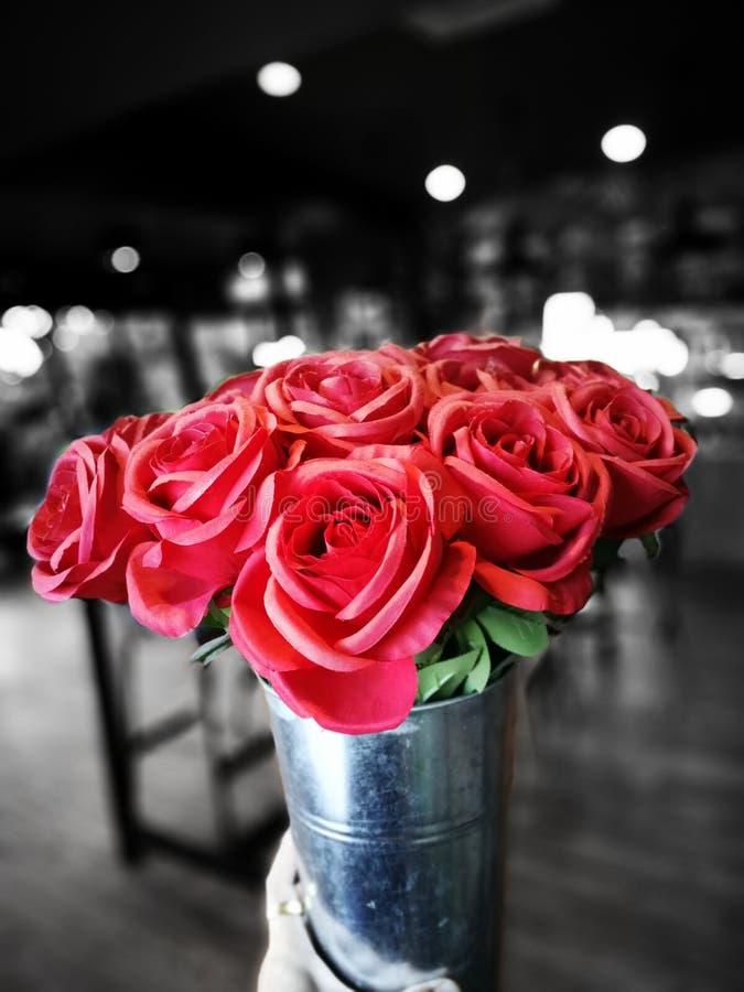Bei mazzi delle rose rosse in contenitore di regalo immagine stock