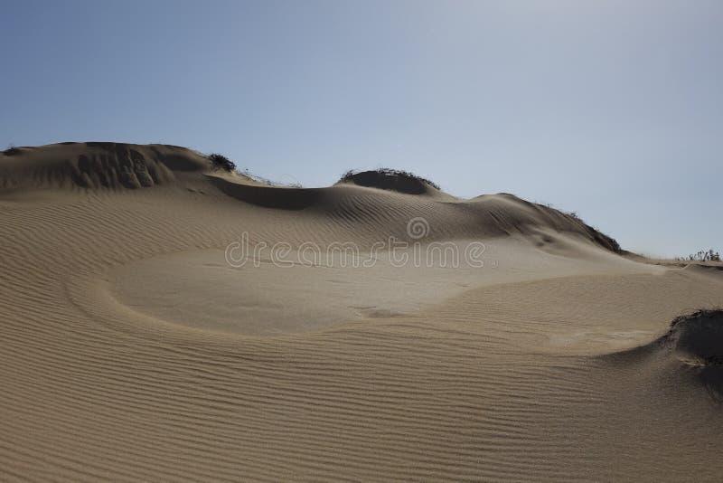 Bei modelli nella sabbia nel parco naturale in Corralejo Fuerteventura Spagna fotografia stock