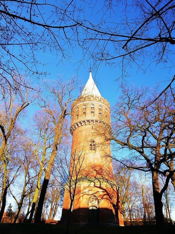 Bei monumenti in Stargard, Polonia immagini stock libere da diritti