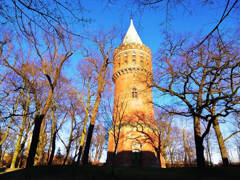 Bei monumenti in Stargard, Polonia fotografia stock libera da diritti