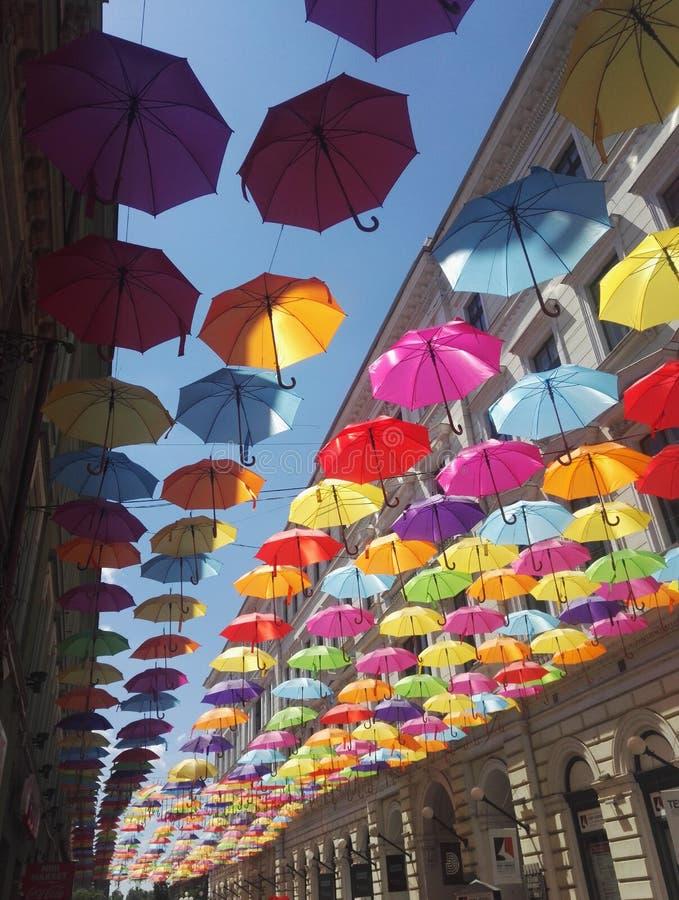 Bei ombrelli che appendono sopra le vie di Timisoara, Romania immagini stock libere da diritti