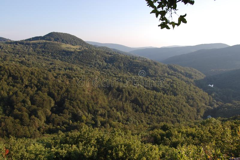Bei paesaggio, albero, foresta e montagne a Grza, Serbia immagine stock