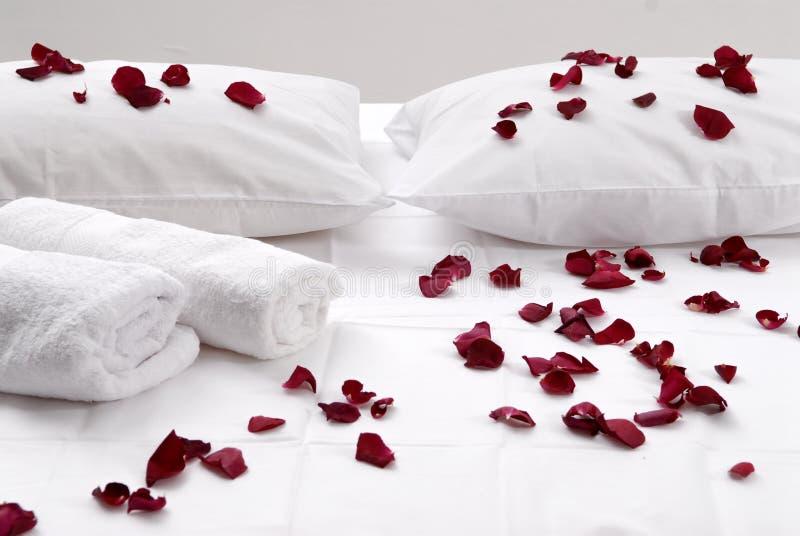 Bei petali rossi romantici sui cuscini bianchi immagine stock libera da diritti