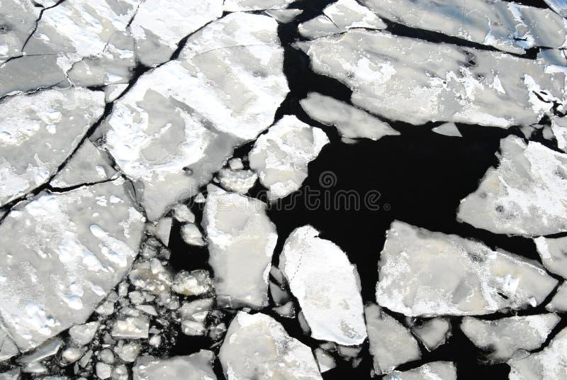 Bei pezzi di ghiaccio fotografie stock