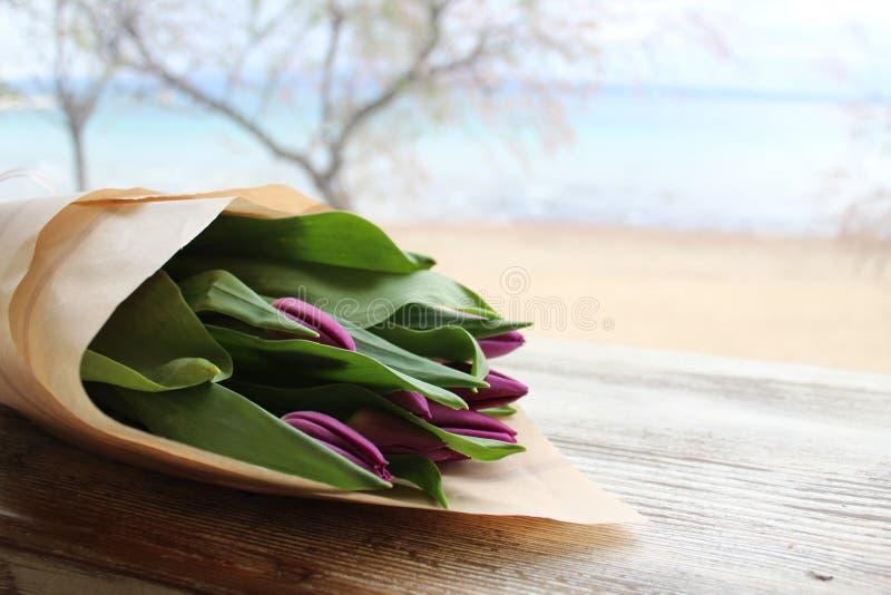 Bei tulipani viola fotografia stock