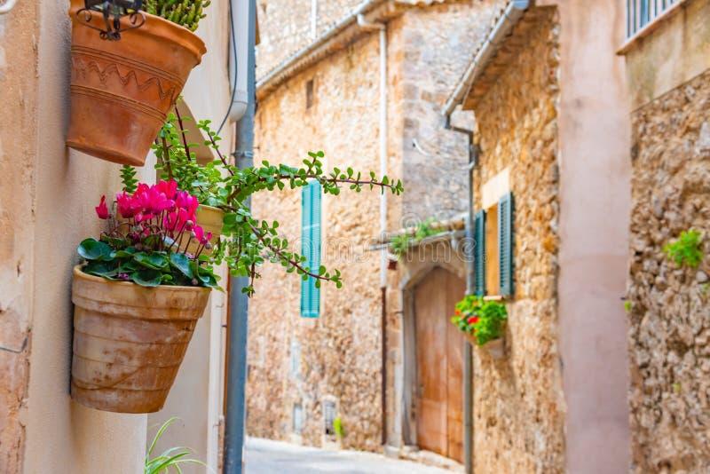 Bei vasi da fiori, fiori variopinti in villaggio spagnolo Valldemossa, Mallorca fotografie stock libere da diritti