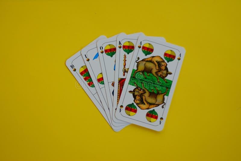 Beiers kaartspel Schafskopf Shell royalty-vrije stock afbeelding
