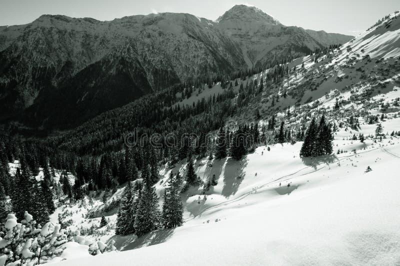 Beierse Alpen in de Winter royalty-vrije stock fotografie