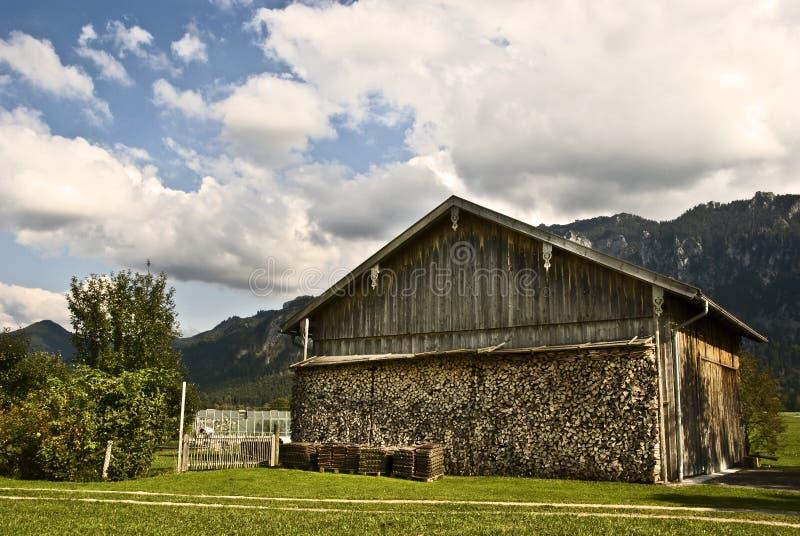 Beierse Woodpile stock foto
