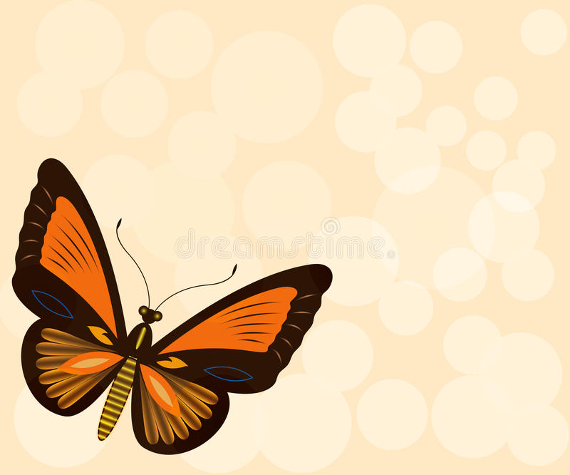 Download Beige Background With Butterfly Stock Vector - Illustration: 26055153