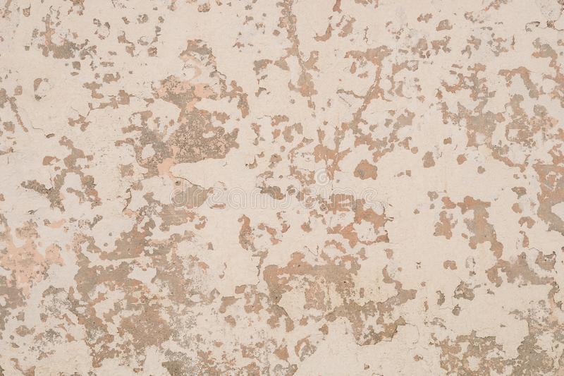 Beige background texture royalty free stock image