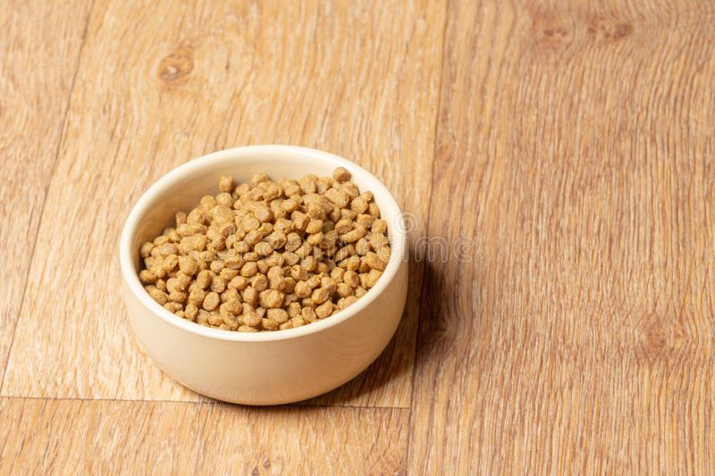 Beige cat and dog food bowl on the floor royalty free stock images