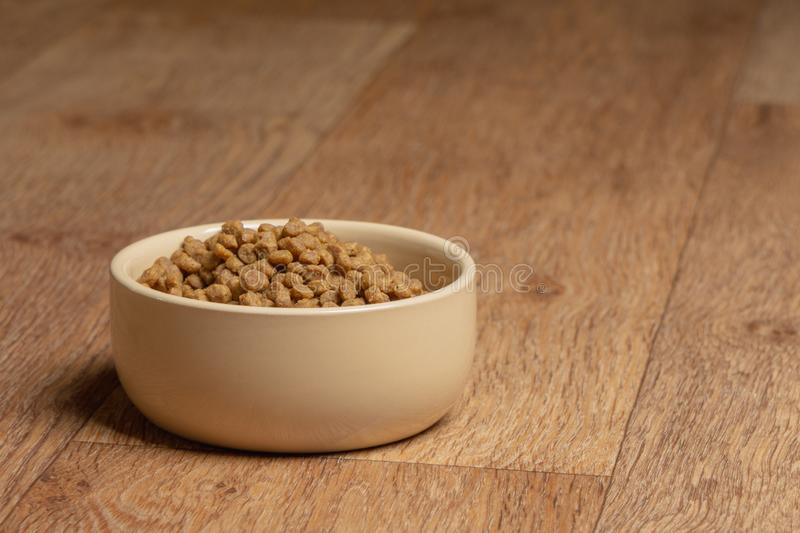 Beige cat and dog food bowl on the floor.  stock image