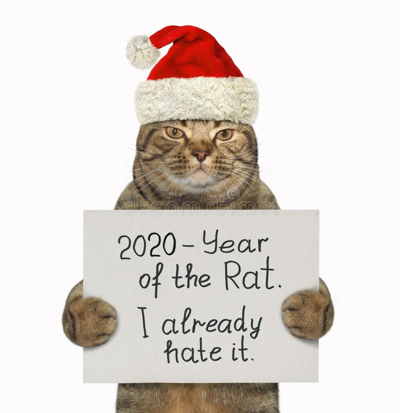 """Cat in red hat hating year of rat. The beige cat in the red Santa Claus hat is holding a sign that says """" 2020 - Year of the Rat. I already hate it. ` royalty free stock images"""