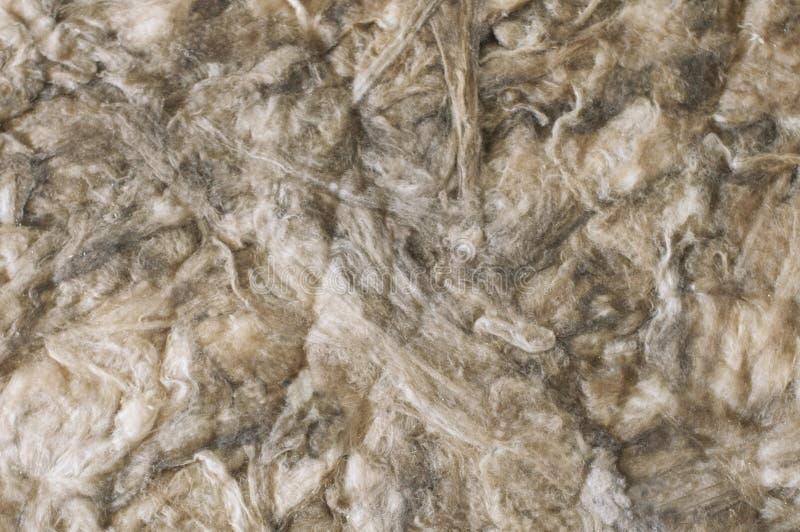 Beige färg för bakgrund av mjuk och fluffig bomull royaltyfri foto