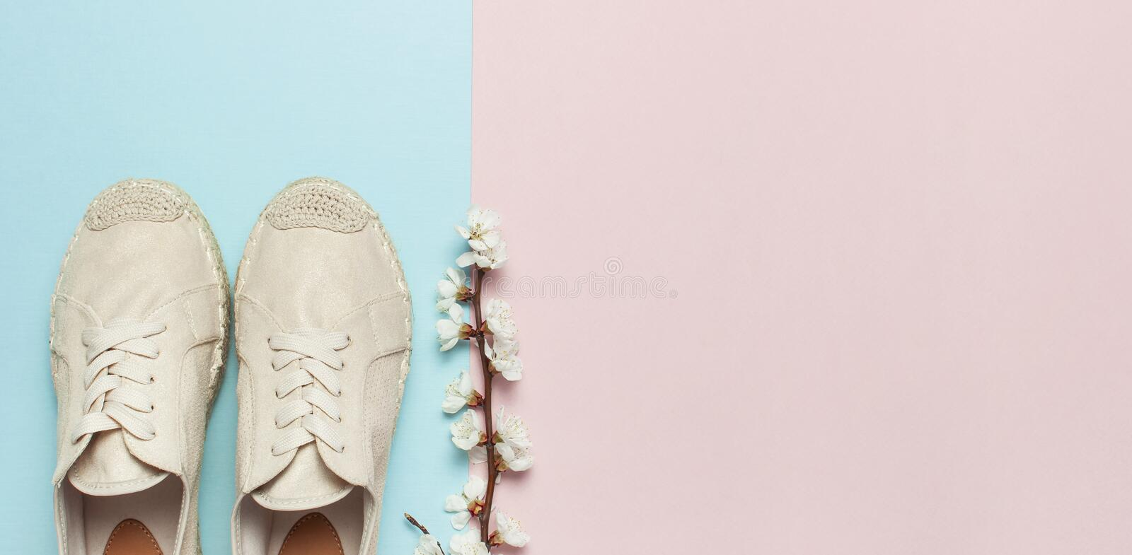 Beige fashionable women`s espadrilles with spring flowering branch on color pastel blue pink background. Creative concept of. Spring shoes, fashion blog or stock photos