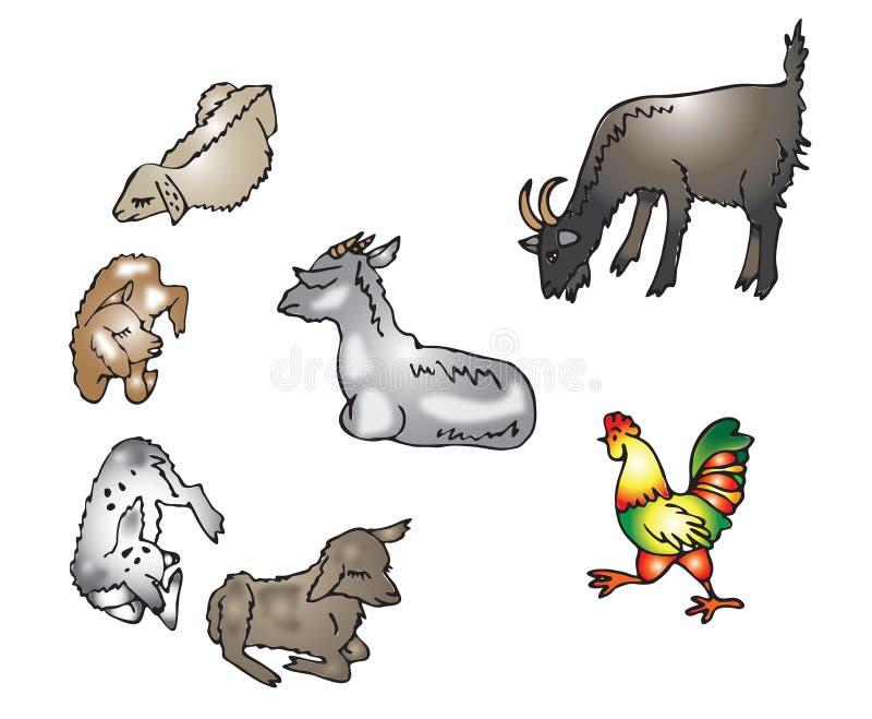Geiten, geiten, een haan vector illustratie