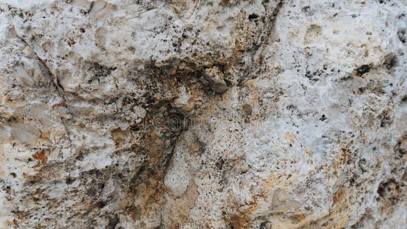 Download Beige Jurassique De Chaux Supérieure Célèbre Image stock - Image du beauté, niveau: 77152675