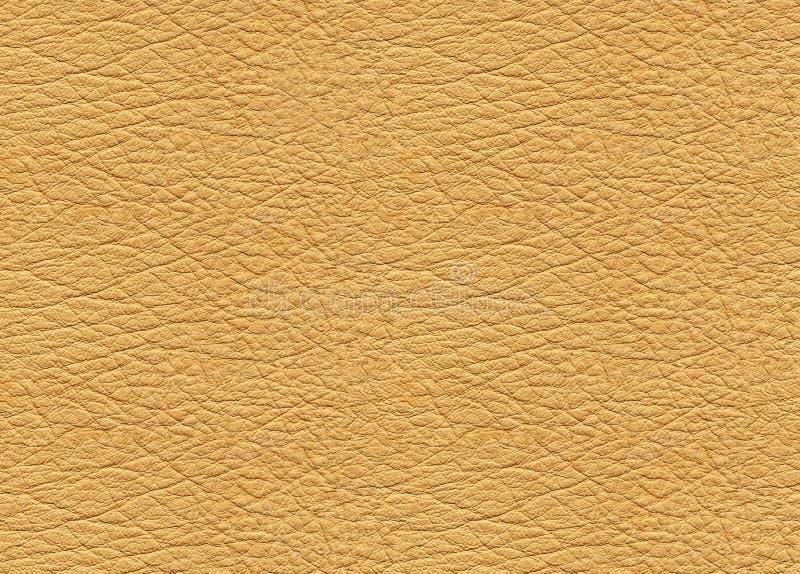 Beige Leather Stock Photos