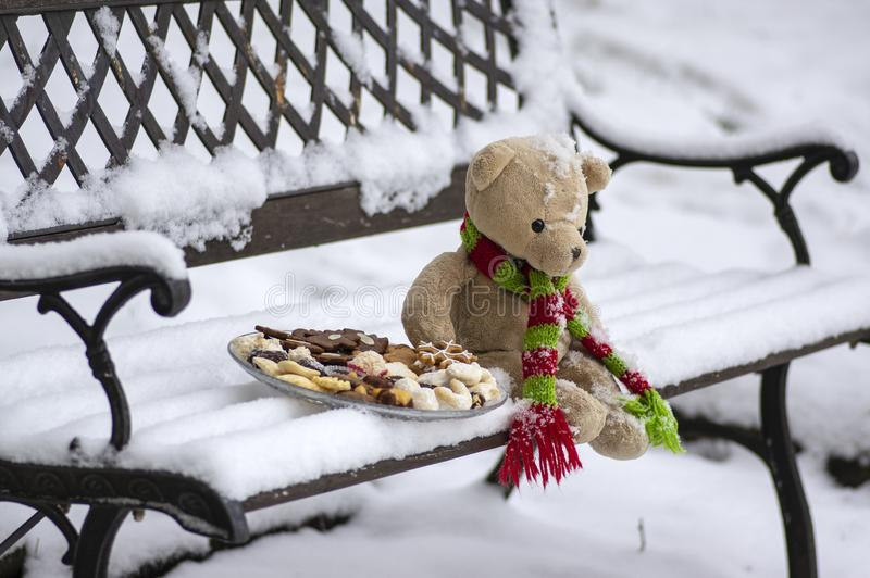 Beige plushy teddy bear with red green striped knitted scarf sitting with Christmas cookies on the bench covered with white snow stock image