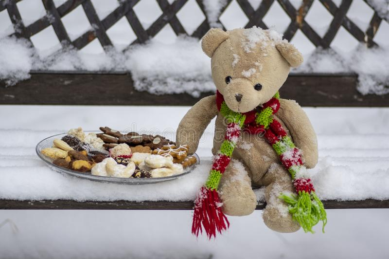 Beige plushy teddy bear with red green striped knitted scarf sitting with Christmas cookies on the bench covered with white snow stock images