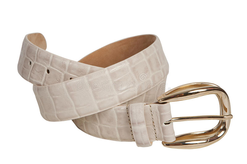 Beige snakeskin belt stock photography