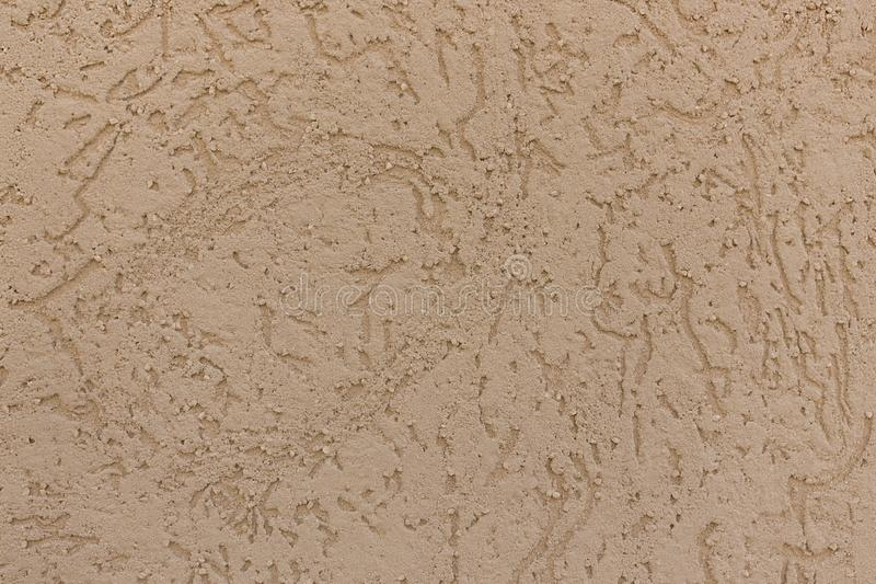 Beige texture in the form of a plane of stone eaten by worms royalty free stock photography