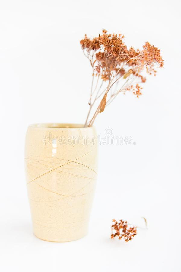 Beige vase with dried plants on a white background. minimalism style. interior decoration. royalty free stock photography