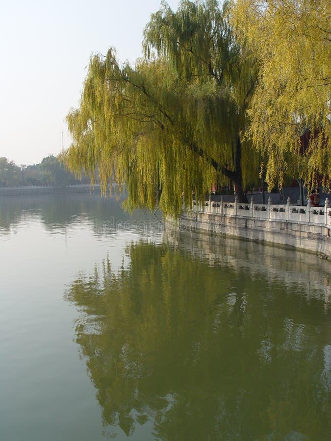 beihai porcelanowa Beijing refleksje wierzbowi park zdjęcia stock